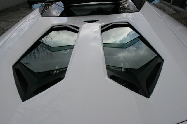 2014 Lamborghini Aventador Roadster Houston, Texas 10