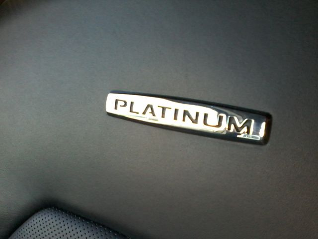 2015 Ford F-150 Platinum San Antonio, Texas 29