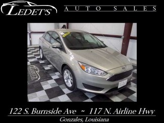 2015 Ford Focus in Gonzales Louisiana
