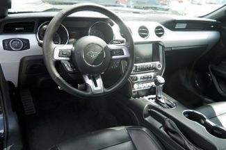 2015 Ford Mustang EcoBoost Hialeah, Florida 15