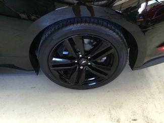 2015 Ford Mustang EcoBoost Premium Performance Pkg Layton, Utah 21