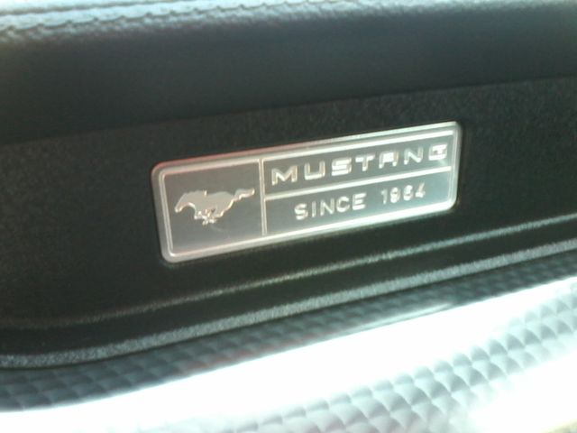 2015 Ford Mustang EcoBoost Premium San Antonio, Texas 28
