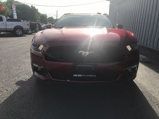 2015 Ford Mustang EcoBoost Premium  city TX  Clear Choice Automotive  in San Antonio, TX