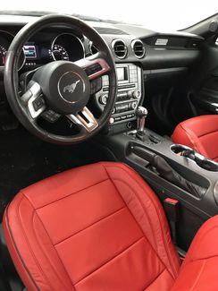2015 Ford Mustang V6 Tampa, Florida