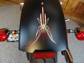 2015 Harley-Davidson Dyna® Street Bob FXDB Anaheim, California 32