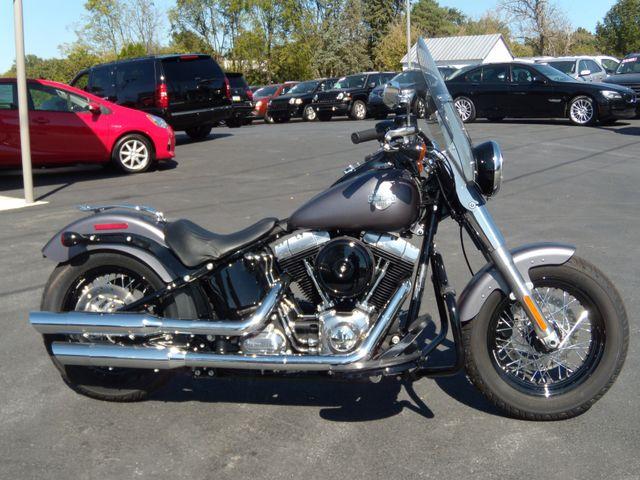 2015 Harley-Davidson Softail® Slim® Ephrata, PA 1