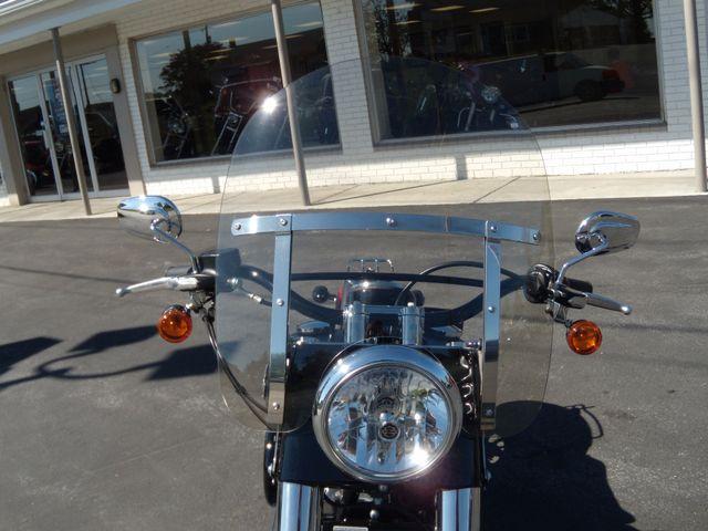 2015 Harley-Davidson Softail® Slim® Ephrata, PA 13