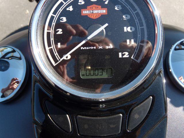 2015 Harley-Davidson Softail® Slim® Ephrata, PA 14