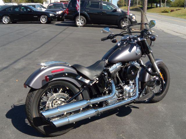 2015 Harley-Davidson Softail® Slim® Ephrata, PA 2