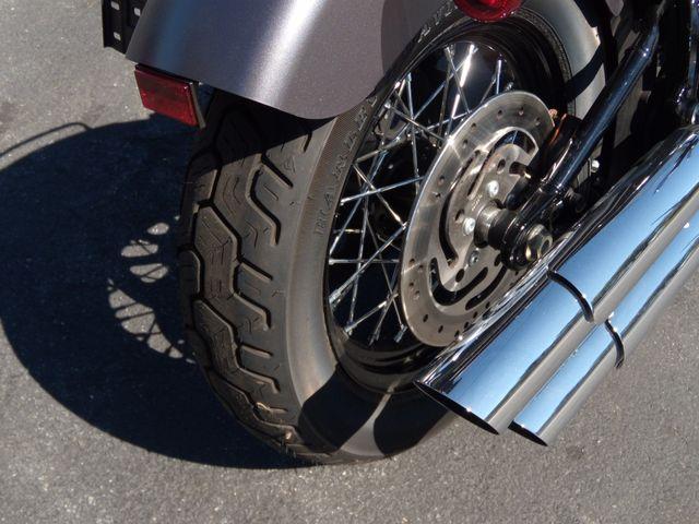 2015 Harley-Davidson Softail® Slim® Ephrata, PA 3