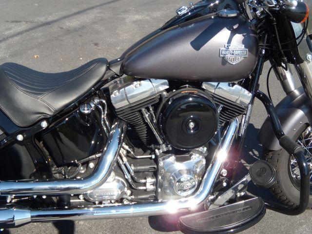 2015 Harley-Davidson Softail® Slim® Ephrata, PA 5