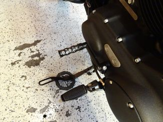 2015 Harley-Davidson Sportster® Iron 883™ Anaheim, California 8