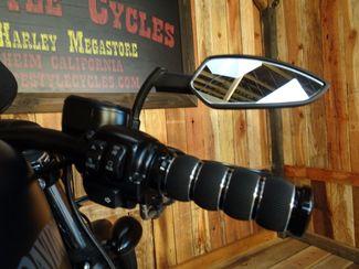 2015 Harley-Davidson Sportster® Iron 883™ Anaheim, California 3
