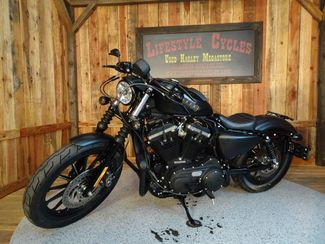 2015 Harley-Davidson Sportster® Iron 883™ Anaheim, California 1