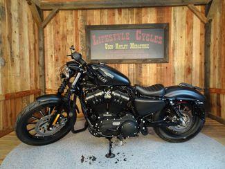 2015 Harley-Davidson Sportster® Iron 883™ Anaheim, California 12