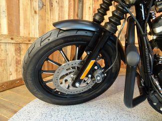 2015 Harley-Davidson Sportster® Iron 883™ Anaheim, California 18
