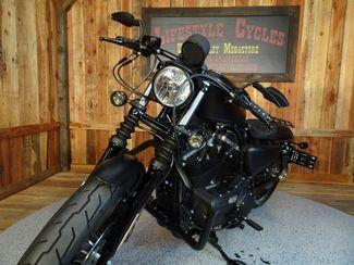 2015 Harley-Davidson Sportster® Iron 883™ Anaheim, California 19