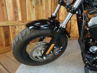 2015 Harley-Davidson Sportster® Forty-Eight® Anaheim, California 18