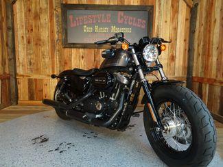 2015 Harley-Davidson Sportster® Forty-Eight® Anaheim, California 8