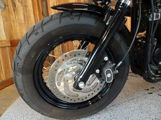 2015 Harley-Davidson Sportster® Forty-Eight® Anaheim, California 19