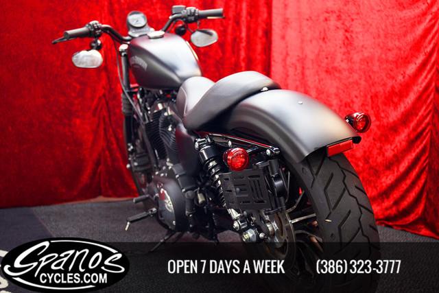 2015 Harley-Davidson SPORTSTER XL883N IRON Daytona Beach, FL 14