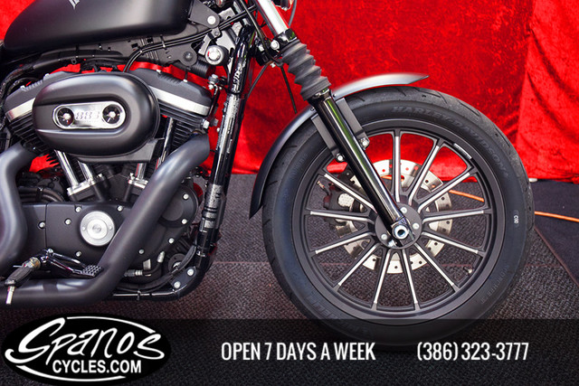 2015 Harley-Davidson SPORTSTER XL883N IRON Daytona Beach, FL 2