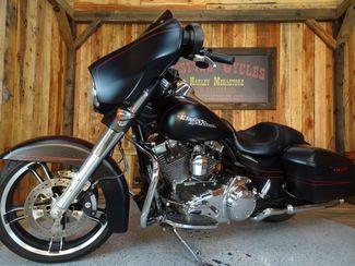 2015 Harley-Davidson Street Glide® Special Anaheim, California 1