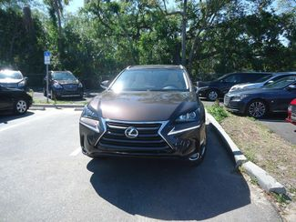 2015 Lexus NX 200t AIR COOLED-HTD SEATS. BLIND SPOT SEFFNER, Florida 9