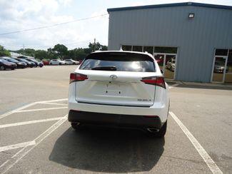 2015 Lexus NX 200t SEFFNER, Florida 15