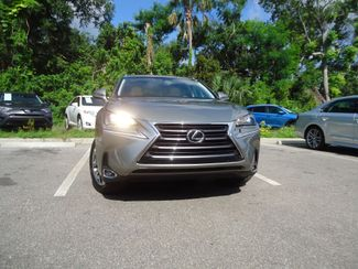 2015 Lexus NX 200t SUNROOF SEFFNER, Florida 10