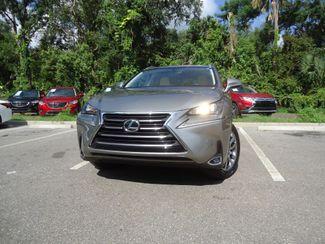 2015 Lexus NX 200t SUNROOF SEFFNER, Florida 7