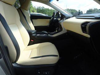 2015 Lexus NX 200t SUNROOF SEFFNER, Florida 19