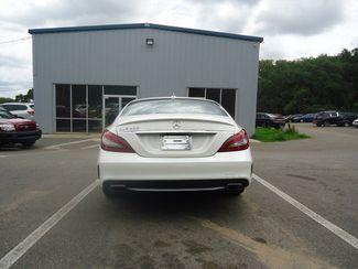 2015 Mercedes-Benz CLS 400 400 SEFFNER, Florida 14