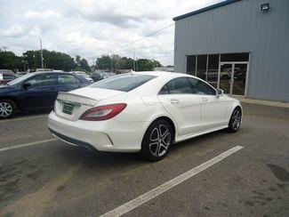 2015 Mercedes-Benz CLS 400 400 SEFFNER, Florida 15