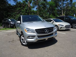 2015 Mercedes-Benz ML 350 w PANORAMIC ROOF SEFFNER, Florida 10
