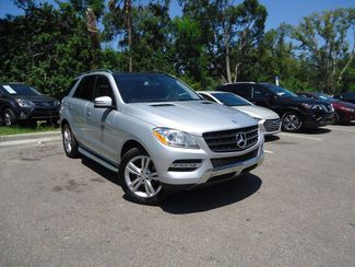 2015 Mercedes-Benz ML 350 w PANORAMIC ROOF SEFFNER, Florida 9