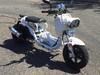 2015 Tao Tao Cruiser  49cc Moped Blaine, Minnesota