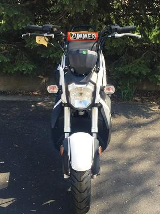 2015 Taotao Zummer Moped / Scooter Blaine, Minnesota 1