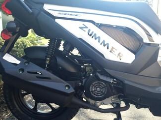 2015 Taotao Zummer Moped / Scooter Blaine, Minnesota 8