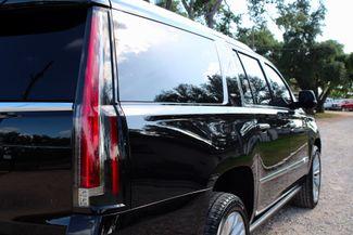 2016 Cadillac Escalade ESV Platinum 4X4 Sealy, Texas 10
