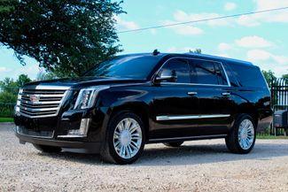 2016 Cadillac Escalade ESV Platinum 4X4 Sealy, Texas 5