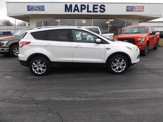 2016 Ford Escape Titanium Warsaw, Missouri 10