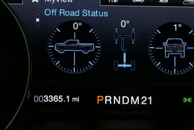 2016 Ford F-150 Platinum/Shelby 700 hp Mooresville, North Carolina 48