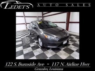 2016 Ford Focus in Gonzales Louisiana