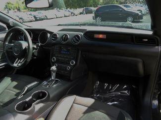 2016 Ford Mustang V6 SEFFNER, Florida 17