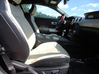 2016 Ford Mustang EcoBoost Premium Convertible SEFFNER, Florida 22