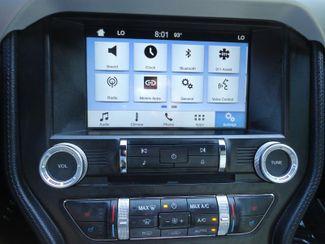 2016 Ford Mustang EcoBoost Premium Convertible SEFFNER, Florida 34