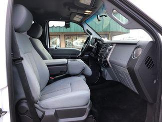 2016 Ford Super Duty F-350 SRW Pickup XLT  city ND  Heiser Motors  in Dickinson, ND