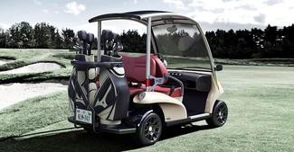 2016 Garia Golf 2 + 2 San Marcos, California 2