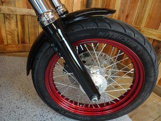 2016 Harley-Davidson Dyna® Street Bob® Anaheim, California 12